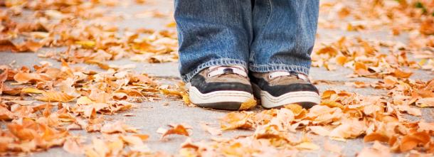 Perdetevi in questa stagione fatta di foglie, colori e poesia...<br>